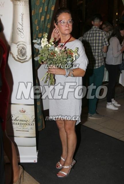 Legs Petra Spalkova nudes (23 photo) Cleavage, Facebook, bra